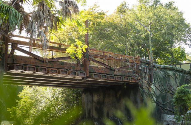 pandora-bridge